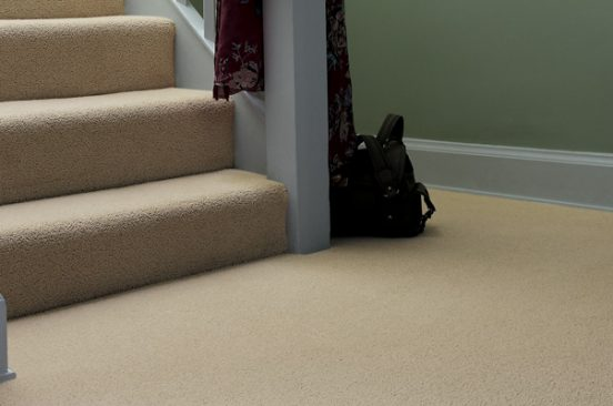 Carpet-Cleaning--Professional-vs.-DIY