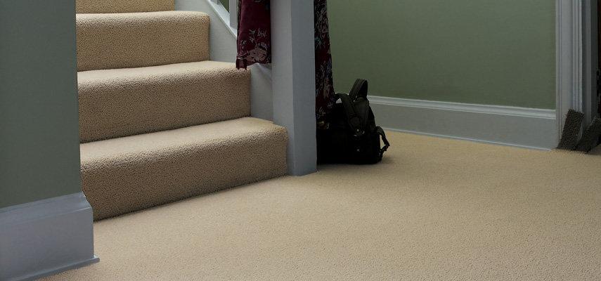 Carpet Cleaning: Professional vs. DIY