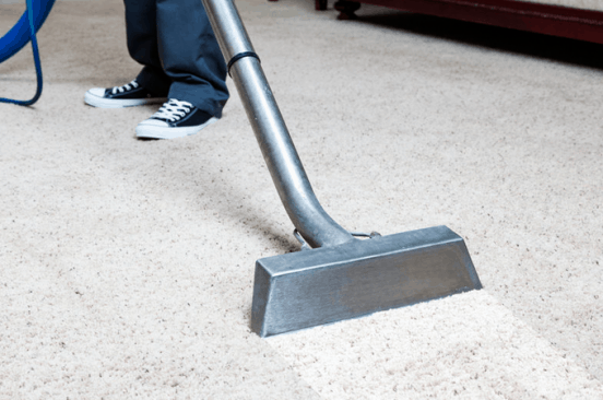The Pitfalls and True Costs of Cheap Carpet Cleaning